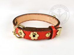 DC-001 Dog Collar