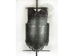 "AP-09 Medieval brigantine ""Visby - Coat of plates"" type II. with back plates - HARDENED"